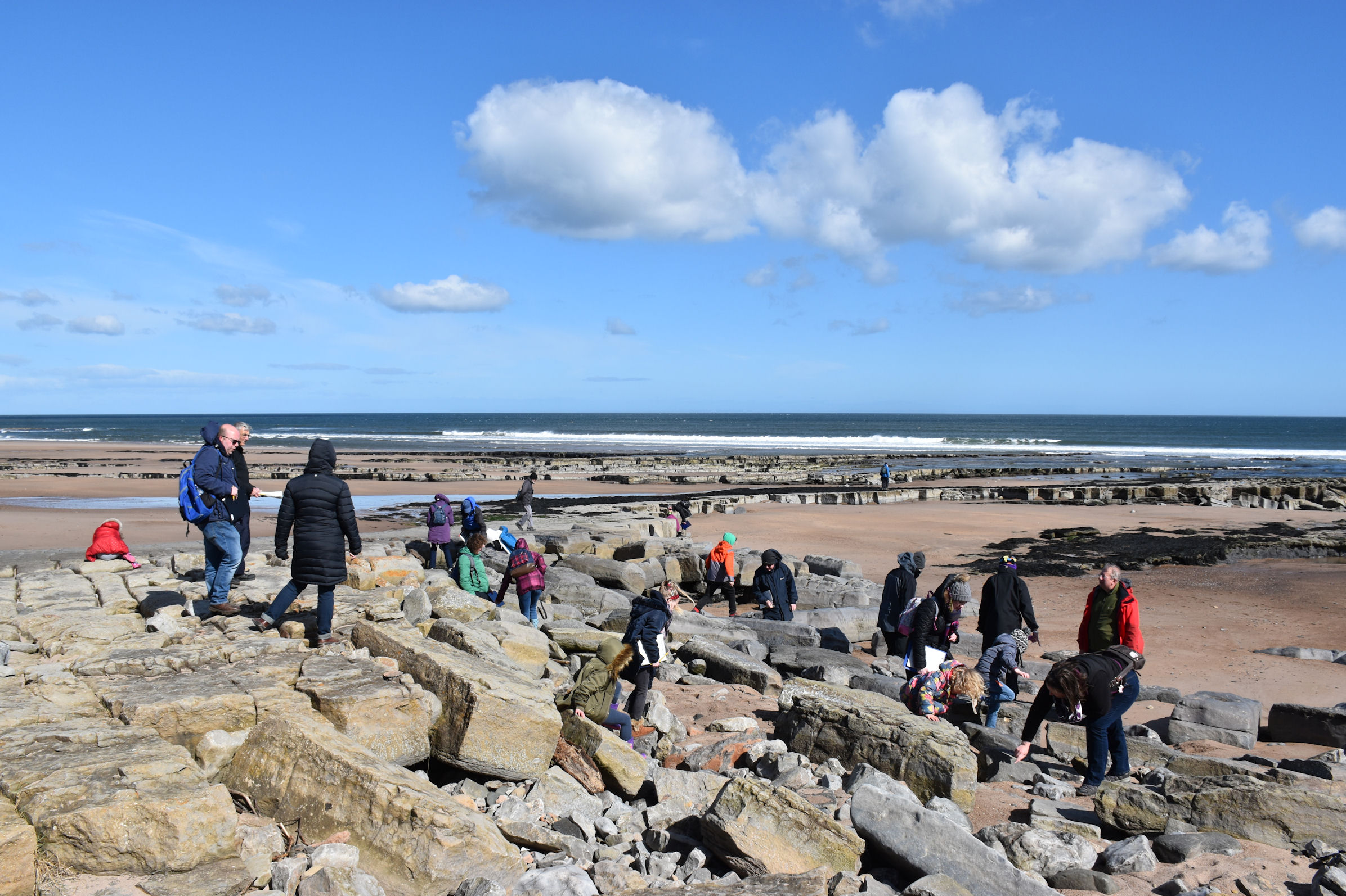 Blog : Northumberland Coast - an Area of Outstanding Natural