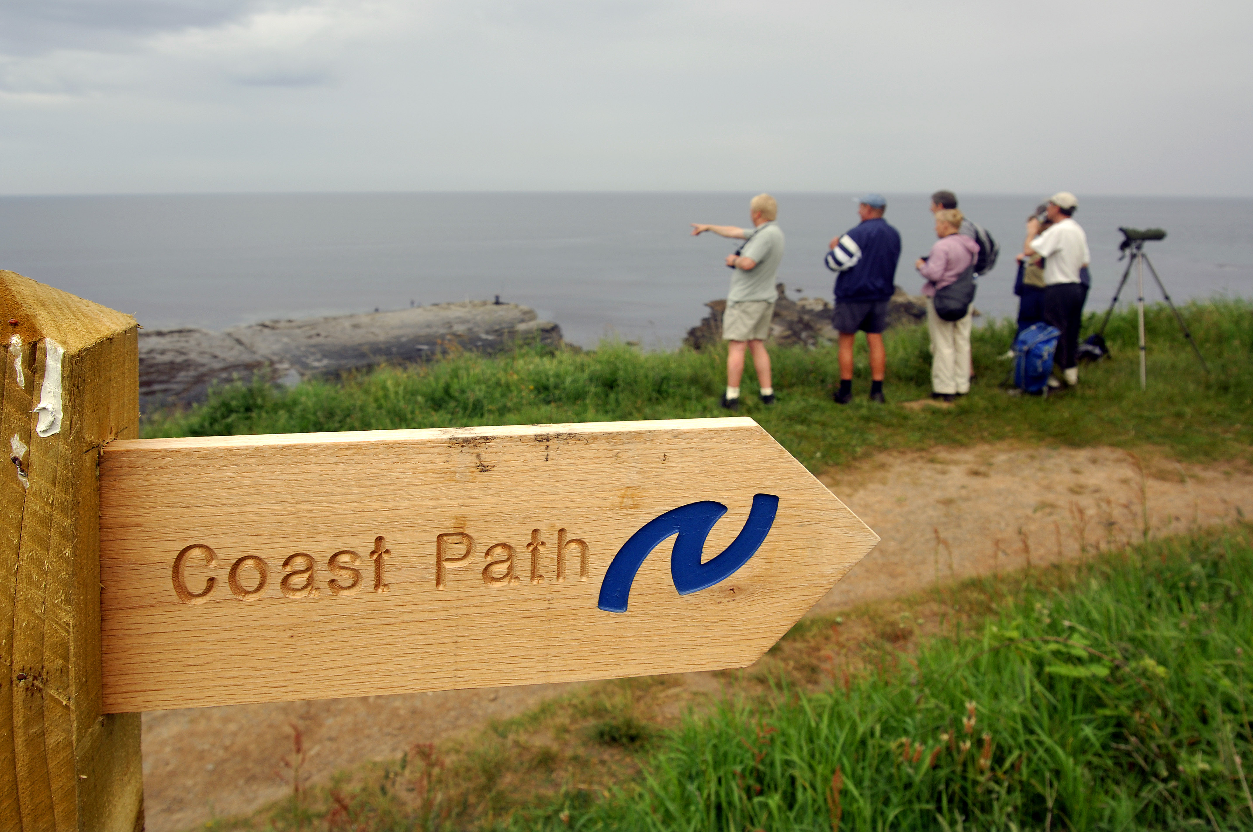 Guided walks to celebrate ten years of coastal path