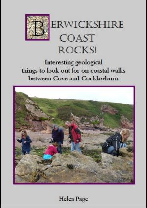 Berwickshire Coast Rocks!