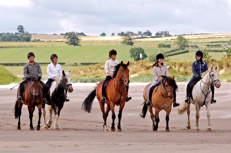 /files/Pages/Horse_riding_Alnmouth_Gavin_duthie_2_800_531.jpg
